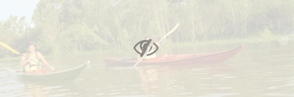 elemento oculto en sitiosimple donweb