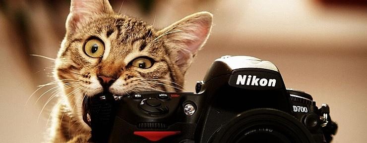 como tomar fotografias para tu sitio web