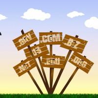 dominios como elegir el mejor